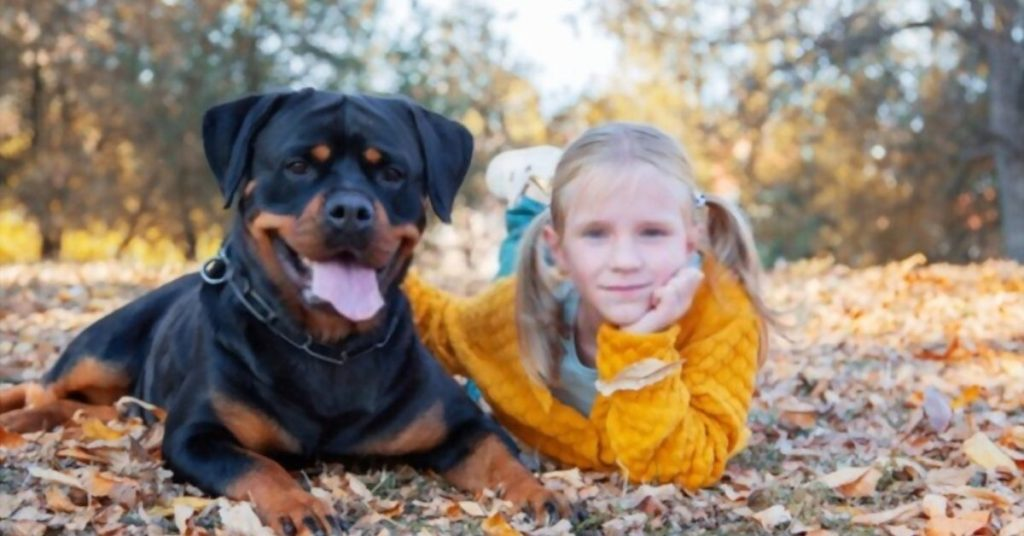 Rottweilers Good with Kids (2)